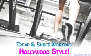 Tread&Shred Hollywood Style